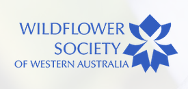 The Wildflower Society of Western Australia